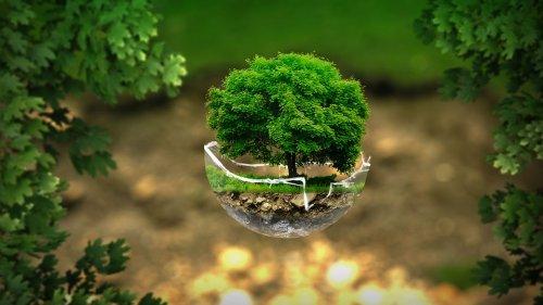 Un secolo fa moriva il padre dell'ecologia