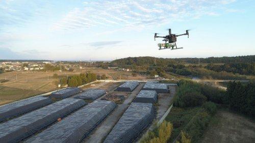 Greenpeace: «Il governo giapponese mente sull'impatto di Fukushima su lavoratori e bambini»