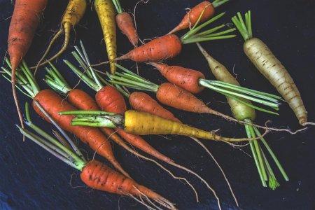Gli alimenti trattati chimicamente devono costare di più rispetto a quelli biologici