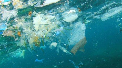 Pescatori-spazzini, ora potranno ripulire i mari dalla plastica