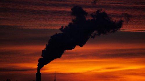 Chi ci vaccina contro l'inquinamento di aria, acqua e cibo?