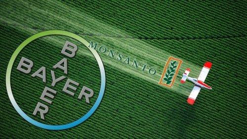 Terza condanna per la Bayer per i danni da RoundUp: il titolo crolla in Borsa