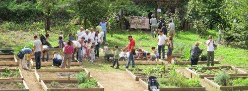 A Roma un orto urbano per ogni quartiere: il progetto
