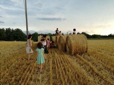 Nasce la Scuola di Agricoltura Indigena