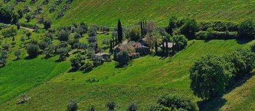 Fabio, il poeta contadino: «La terra è sincera, è il presente e il futuro»