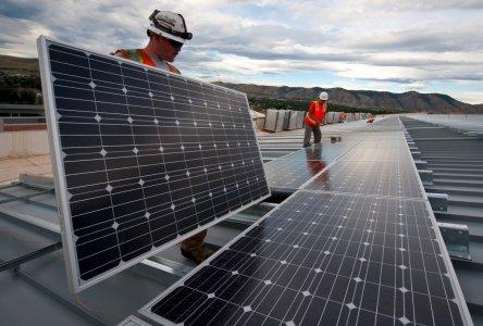 WWF, un piano per far ripartire le rinnovabili in Italia