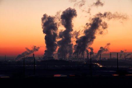 A quando i lockdown e i DPCM per tutelare l'ambiente, quindi la nostra salute?