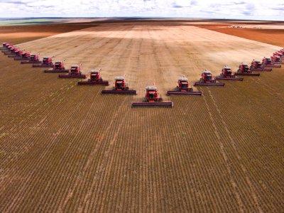 L'agricoltura chimica e gli allevamenti intensivi hanno spazzato via 4 milioni di aziende agricole in Europa
