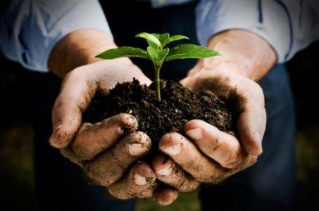 Decrescita, occupazione e green economy