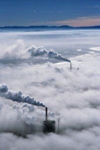 Emissioni, per WWF le attuali politiche di riduzione non bastano