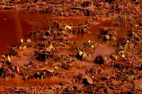Ungheria, fango tossico raggiunge il Danubio. A rischio l'intero ecosistema