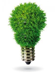 Lampadine salva energia: quali scegliere?