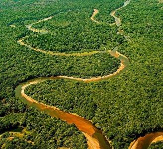 Il Brasile mette a rischio la foresta amazzonica. Si aspetta il veto della Rousseff