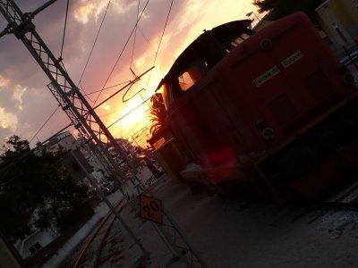 Il treno delle Ferrovie del Gargano: bellezze di paglia, di sole, di mare
