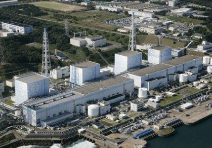 Fukushima teme il tifone Ma-on e la carne bovina contaminata