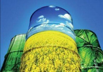 Biocarburanti: quali i rischi per l'ambiente?