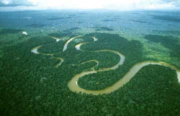 Amazzonia: la legge brasiliana che fa discutere