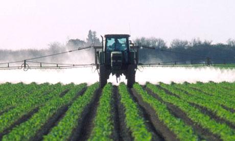 Chiesto il ritiro del decreto che autorizza l'uso del pesticida pericoloso