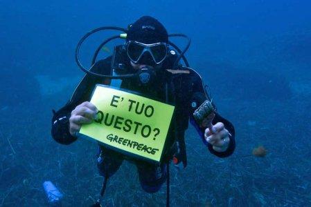 Fondali, Santuario dei Cetacei: è allarme per l'Isola del Giglio