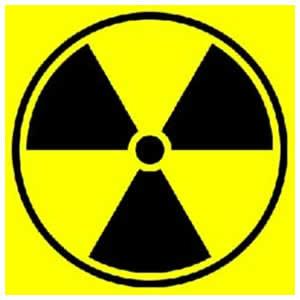 Francia, paura per l'esplosione nucleare. Le autorità:
