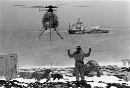 Greenpeace, 40 anni di testimonianza e attivismo per l'ambiente