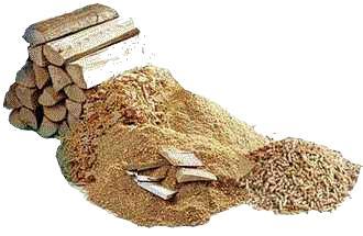 Biomasse: 80 scienziati scrivono al Congresso USA