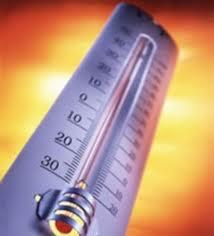 L'innalzamento delle temperature manda in tilt le coltivazioni