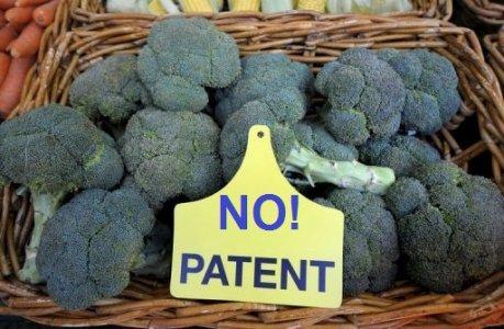 A Monaco centinaia in protesta contro i brevetti sul cibo