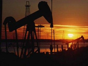 """Puglia: """"no alle ricerche petrolifere nel mar Adriatico"""""""