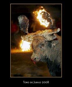 Spagna, fermare la festa cruenta del Toro di fuoco