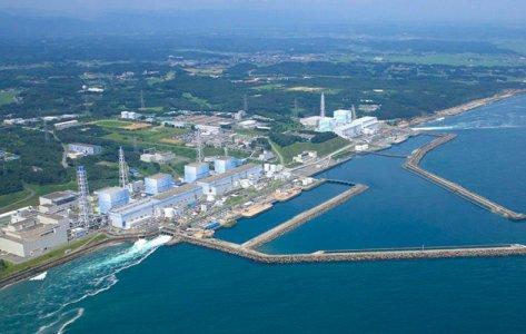 Fukushima: cibo contaminato in vaste aree del Giappone