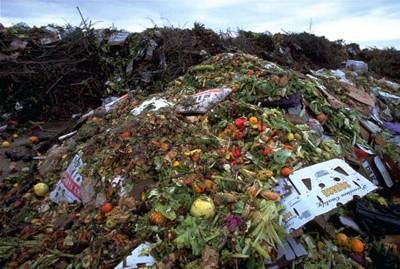 Sprechi alimentari, in Italia ogni anno sono 10-20 milioni di tonnellate