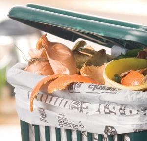 Dl Ambiente approvato al Senato: finalmente sacchetti veramente compostabili?