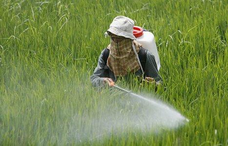 Terra contaminata, l'Ue proroga l'importazione