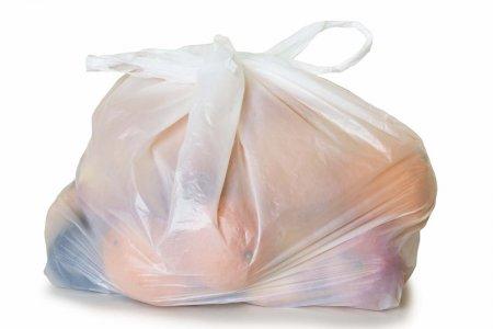 Sacchetti di plastica: sanzioni rimandate al 2014