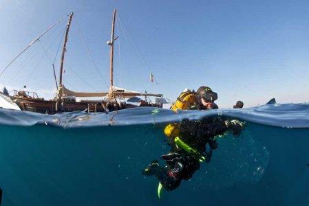 Come sta il mare del Giglio? Da Greenpeace analisi e foto dopo il disastro