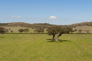 Il Governo Monti introduce l'IMU, tempi duri per l'agricoltura