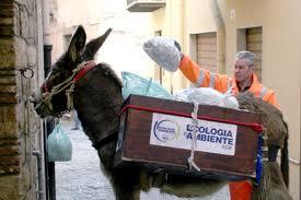 Castelbuono, asine 'porta a porta' per la raccolta differenziata