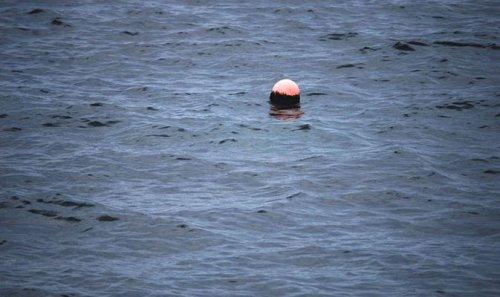 Falla su una nave: tonnellate di carburante in mare a Taranto