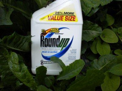 Pesticidi: Roundup causa mutazioni genetiche negli anfibi