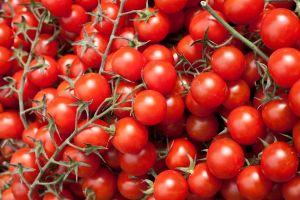 Il pomodoro biologico? Un toccasana per la salute