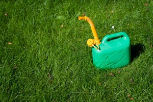 Tutti pazzi per il giardinaggio domestico, gli italiani scelgono il verde