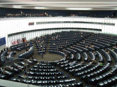 Frenare l'incenerimento e tutelare la biodiversità, il programma dell'Ue