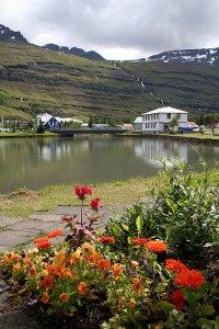 Viaggio a Nordest. I fiordi orientali e il futuro dell'Islanda