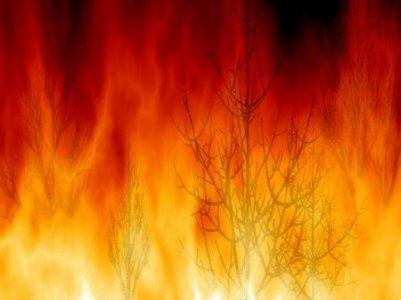 Bruciano le terre di 'Libera' confiscate alla mafia