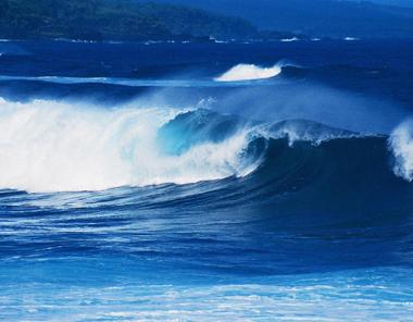 Emissioni di CO2, l'acidificazione degli oceani mette a rischio le specie