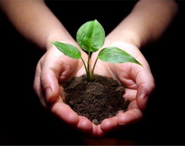 Ladispoli: a luglio un corso di Permacultura di 72 ore certificato