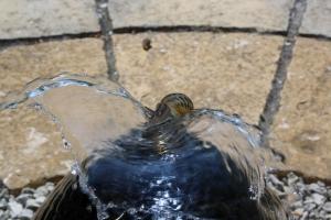 Acqua: Roma in frenata sulla privatizzazione. Nel Lazio parte il referendum