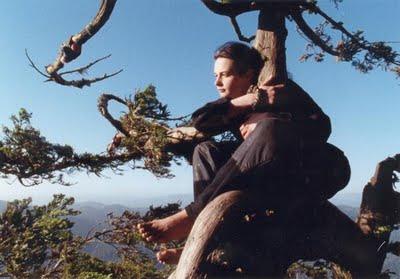 Due anni su una sequoia, la forza di Julia