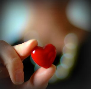 La scuola dell'amore, la scuola della sapienza